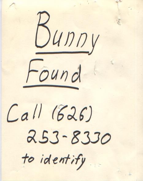 http://fancynotions.files.wordpress.com/2008/08/found-bunny.jpeg