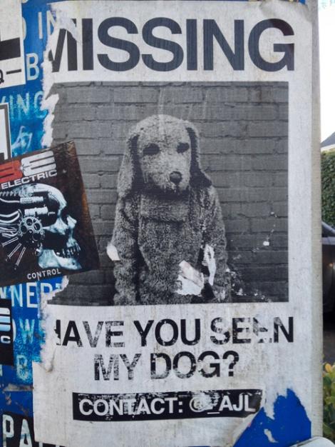 notadog