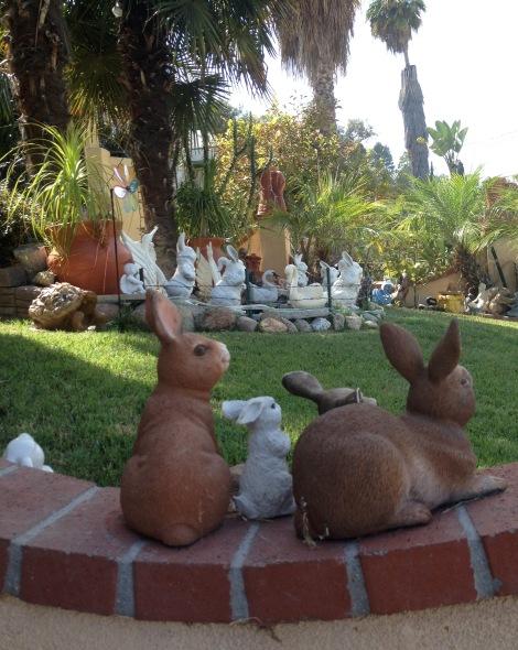 bunnyburycurve