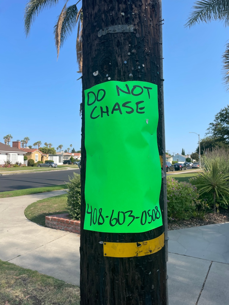"""Notice with """"DO NOT CHASE"""" and a phone number. No image of what not to chase."""